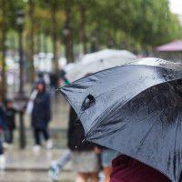 Биолог рассказала о связи заболеваемости COVID-19 в России с погодой
