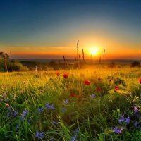 После тёплых выходных в Ростовской области вновь похолодает