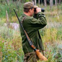 Время охоты: сроки и правила